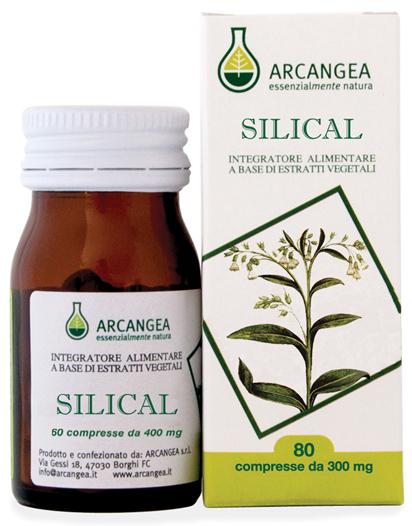 silical-picc