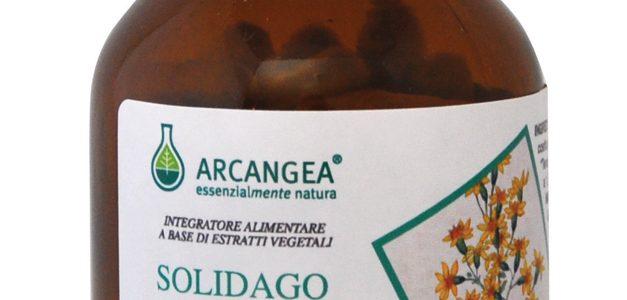 Solidago Biologico