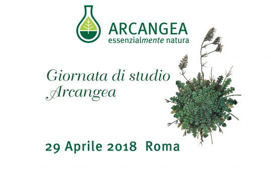 Giornata di studio Arcangea